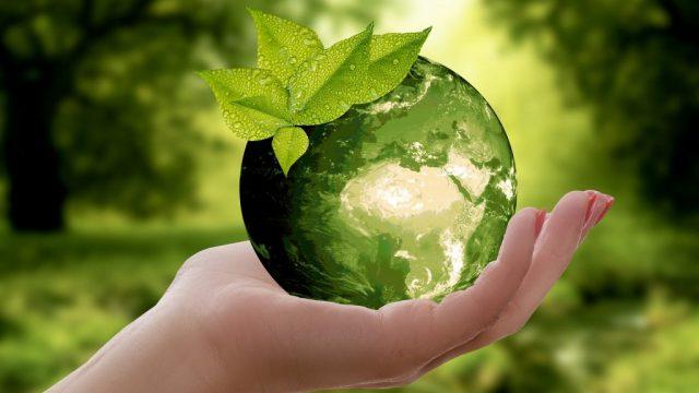地球に優しいモデーア